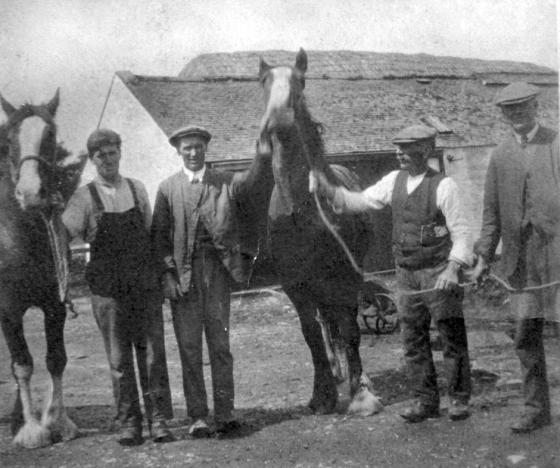 wa-015-men-and-horses