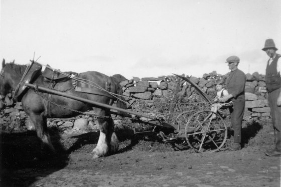 Horse reaper at Glenchamber