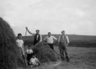 Dalnigap hay-making