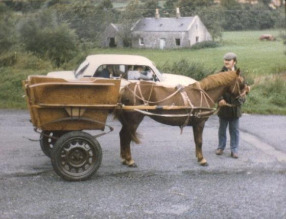 travellerscart